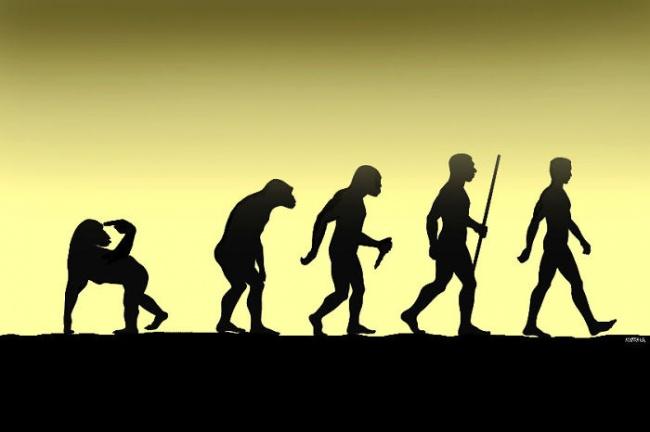 05 evrim