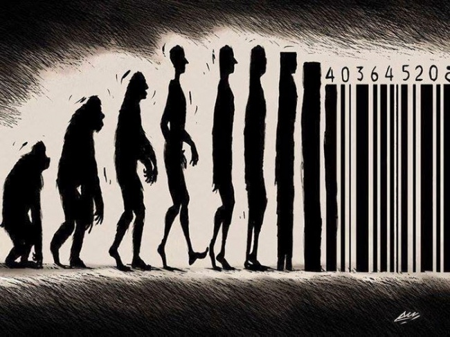 07 evrim