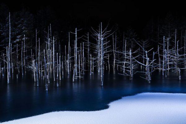190283_206440_5_-Hiroshi-Tanita-Japan-Shortlist-Open-Competition-Nature-2017-Sony-World-Photography-Awards-58c68fab806f6__880
