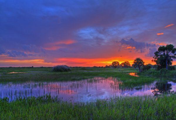 7-2-Everglades