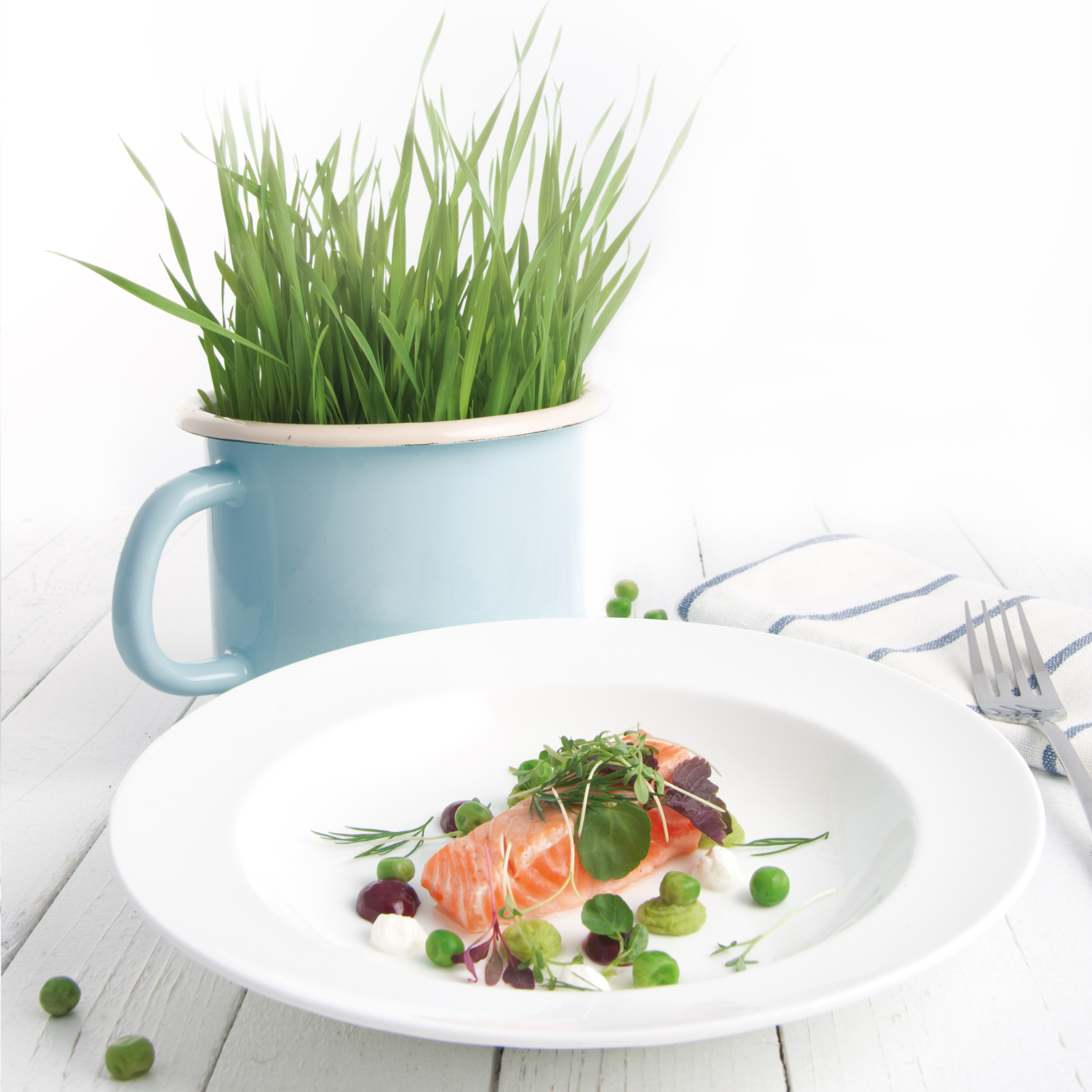 Fried Norwegian Salmon with Green Peas and Currant Mustard_LR