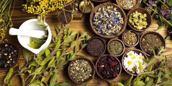 Herbalizm