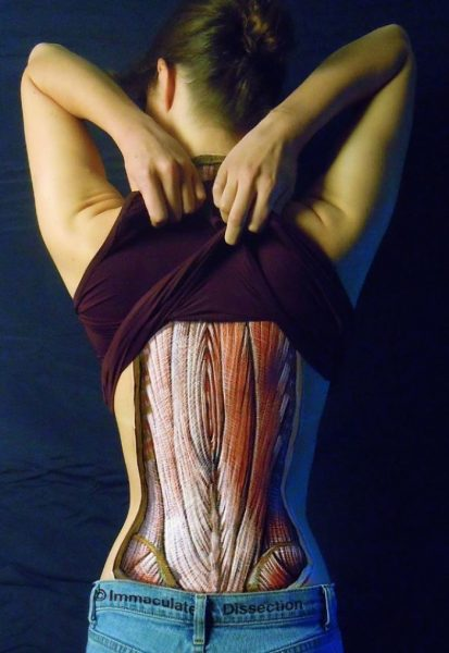 anatomical-body-paintings-danny-quirk-16-58b7ce2a8ec40__700