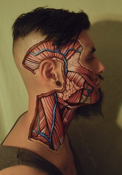 anatomical-body-paintings-danny-quirk-21-58b7ce7520d13__700