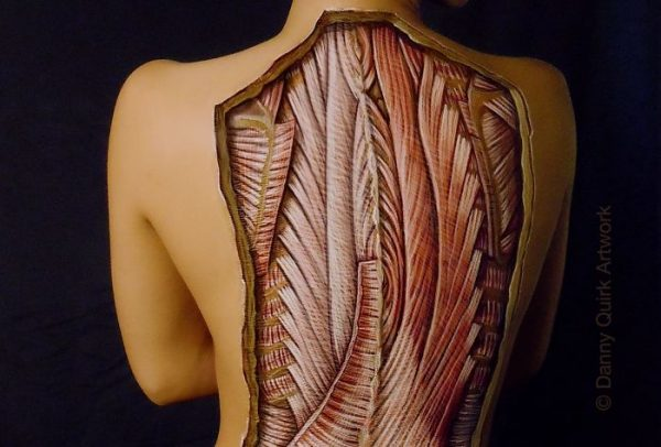 anatomical-body-paintings-danny-quirk-23-58b82a88ab120__700
