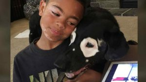 carter-blanchard-perro-rowdy-amigos-con-vitiligo-2