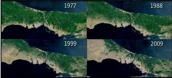 istanbul-yesil-alanlarin-azalmasi