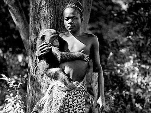 ota-with-monkey