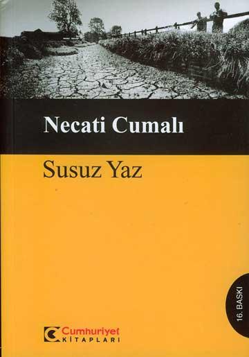 susuz_yaz_20081071641