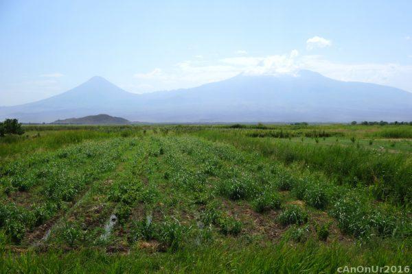 027 Ararat'tan Kucuk Agri ve Buyuk Agri (Ermenistan)