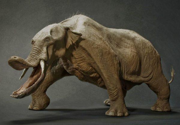 1-Platybelodon