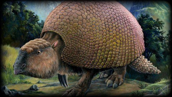 12-Gliptodon
