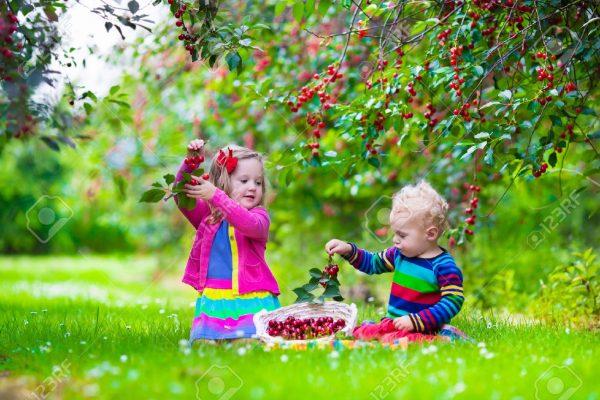 12. Çocuk ve Ağaç