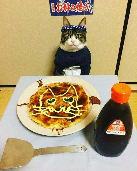 dining-with-dressed-cat-maro-japan-21-58f46ae7f2839__700