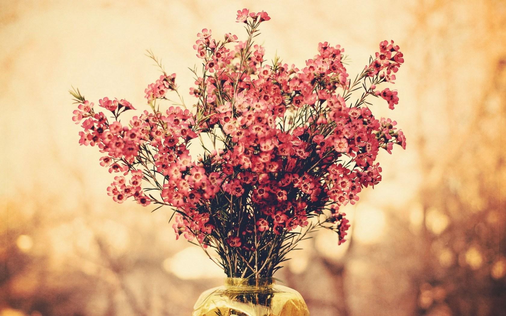 flowers-bouquet-macro-1