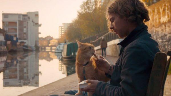 a-streetcat-named-bob-movie