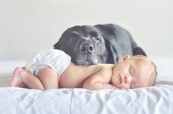 cute-baby-with-dog