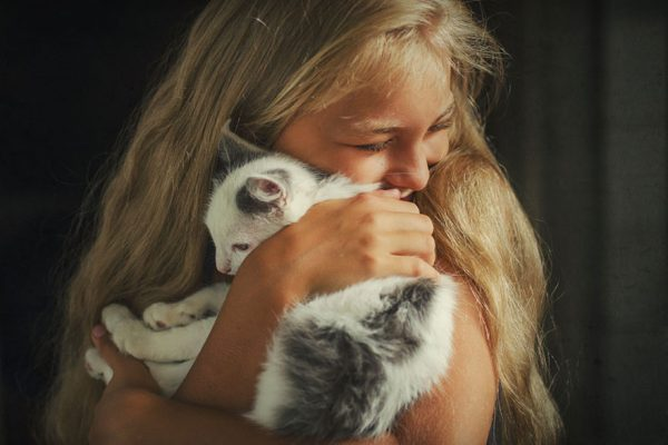 kedi_kucaklayici (1)