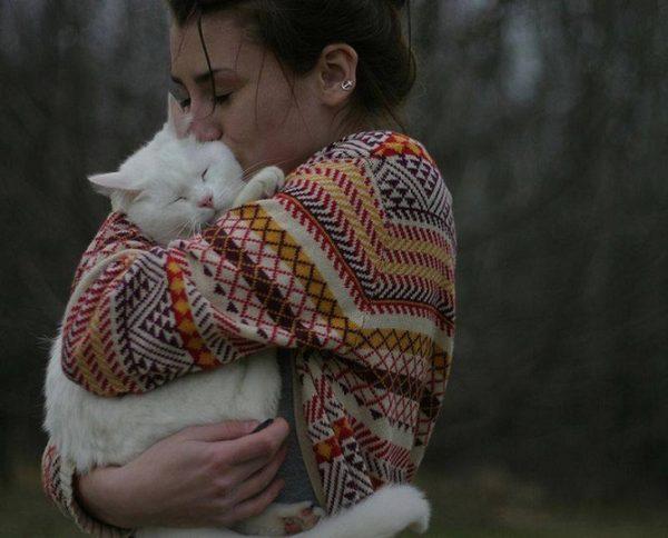 kedi_kucaklayici (4)