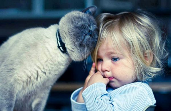 kids-with-cats-13__605