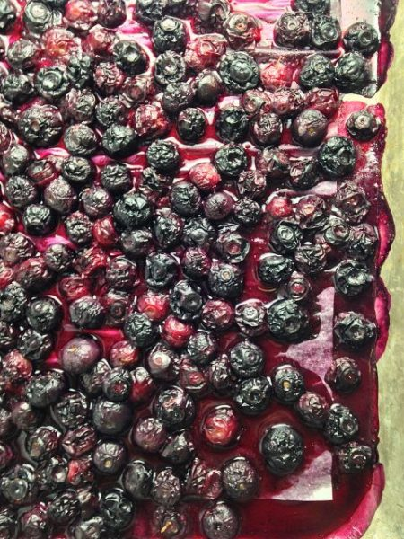 gallery-1436564414-roasted-blueberries-delish-2