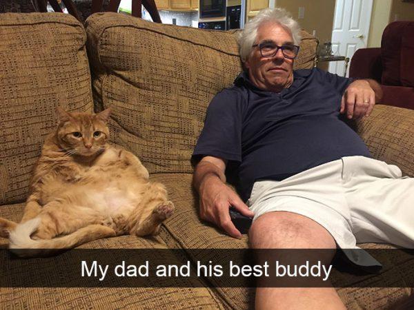 hilarious-cat-snapchats-11-5948f0478f200__700
