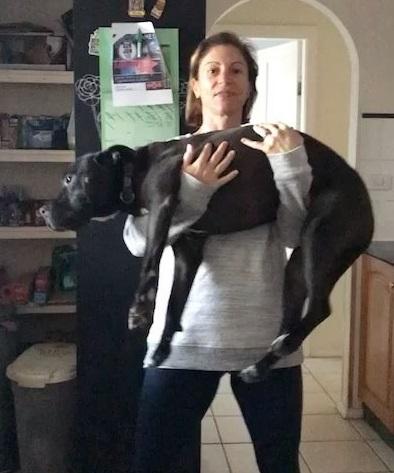 köpeklerle_squat (16)