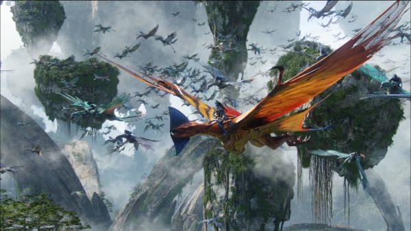 leonopteryxflighy