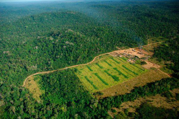 Logging mill near Apiacás, Mato Grosso state. Juruena National Park, Brazil.