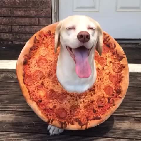 pizza_kopek (2)