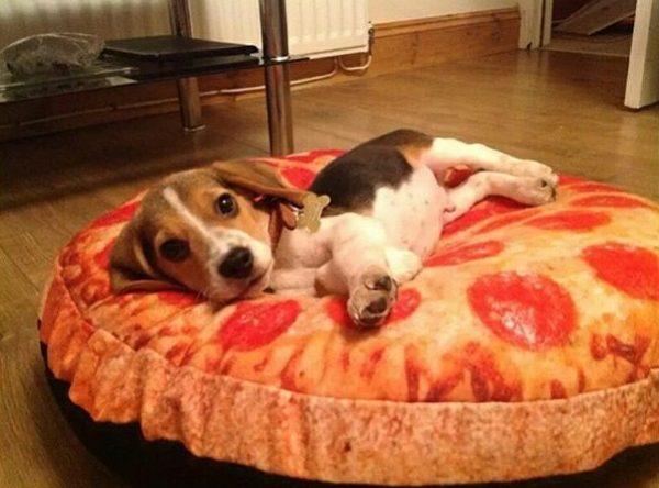 pizza_kopek (4)