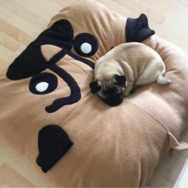 pug_kopek_yatagi_13