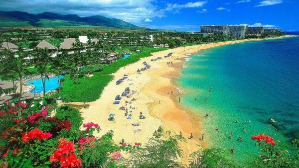 20-Maui