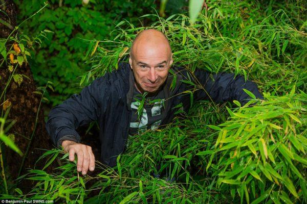 4237E45900000578-4686364-Nick_Wilson_61_was_inspired_to_transform_his_garden_in_Leeds_aft