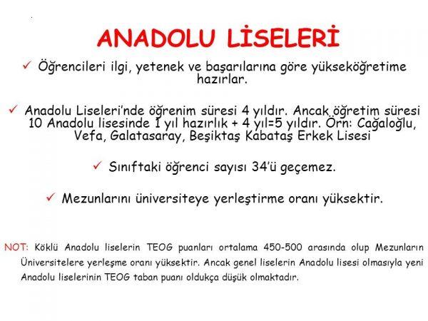 anadolu-liseleri