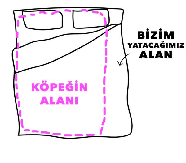 kopek_insani (5)