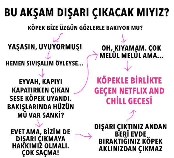 kopek_insani (7)