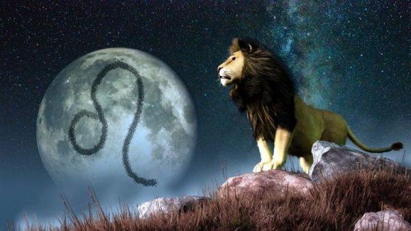 lionsymbol-1--579265345f9b58cdf300cca1