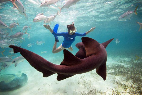 9-Ambergris Caye