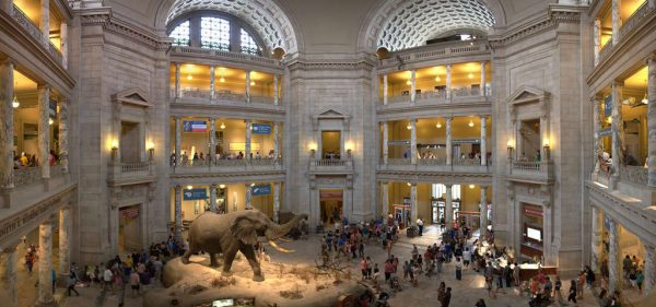 internet online müze