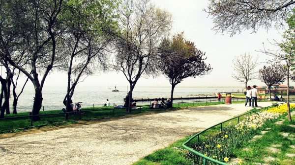fenerbahce-parki