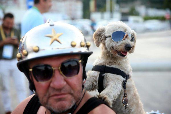 kafe_motosiklet_kopek (4)
