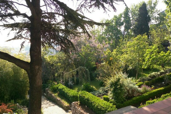 yesil_odak_istanbul_universitesi_botanik_bahcesi_3