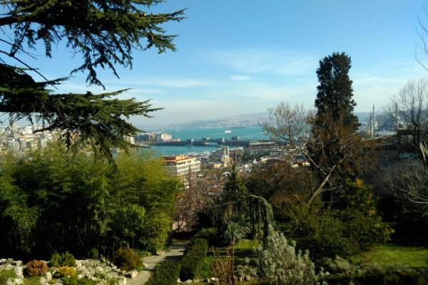 yesil_odak_istanbul_universitesi_botanik_bahcesi_5