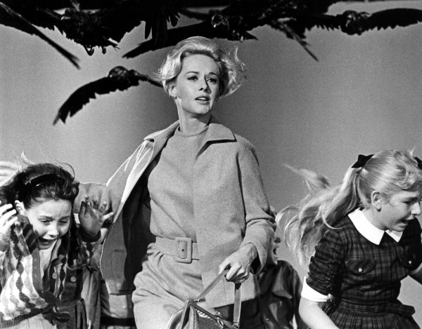 ORG XMIT: *S0418250297* Tippi Hedren in Alfred Hitchcock's 'The Birds' Email: ewade@dallasnews.com Phone: 1423 OrigName: 1161890345_0648339001161890345_0.JPG Name: Birds1.JPG Byline: Universal Pictures Submitter: erin Timestamp: 2006-10-26 14:19:05 Section: QUICK_NQ 10272006xQUICK 10072010xGUIDEDAILY 10062011xBRIEFING