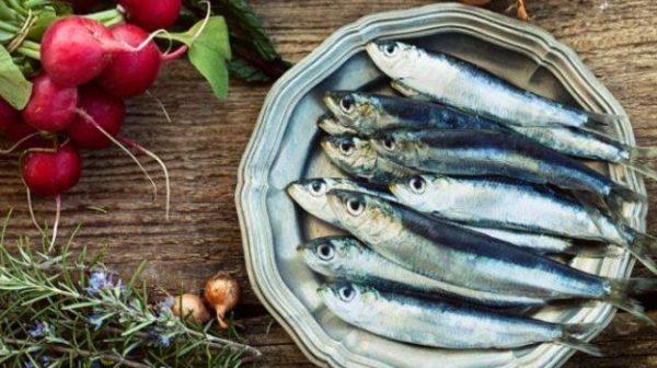 625-sardines_625x350_61447243655