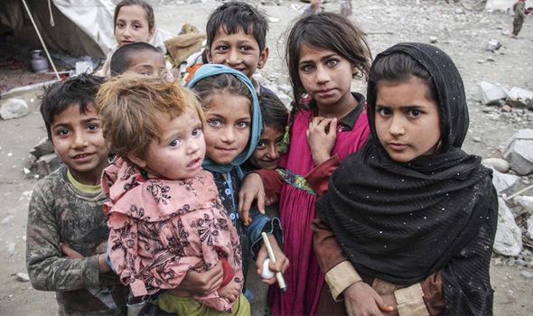 Afghan-530402