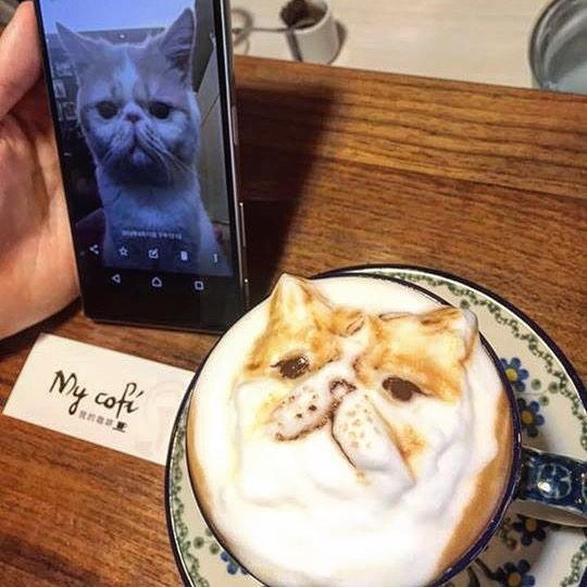 latte_art (12)