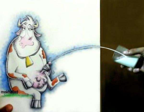 12-cow-milk-59d12eb9e03c6-png__700
