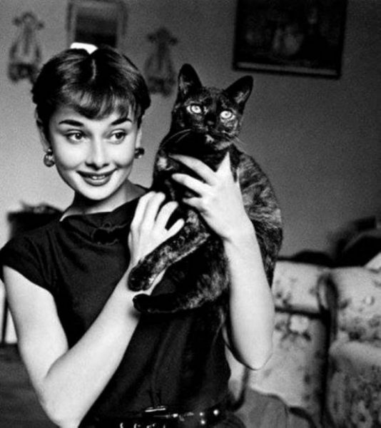 700x786xAudrey-Hepburn-holds-a-cat.jpg.pagespeed.ic.3eNXovgz7q